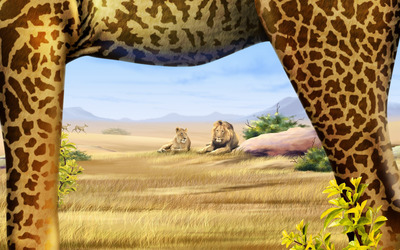 Lions looking at the giraffe wallpaper
