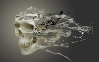 Liquefied skull wallpaper 1920x1080 jpg