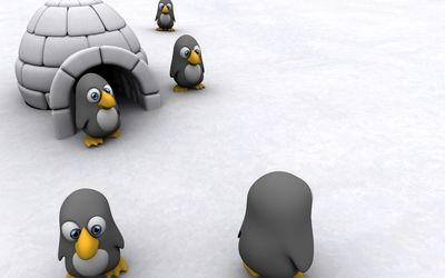 Lost penguins wallpaper
