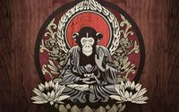 Meditating monkey wallpaper 1920x1080 jpg