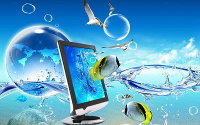 Monitor, fish and seagulls in the ocean wallpaper