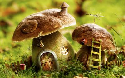 Mushroom houses wallpaper