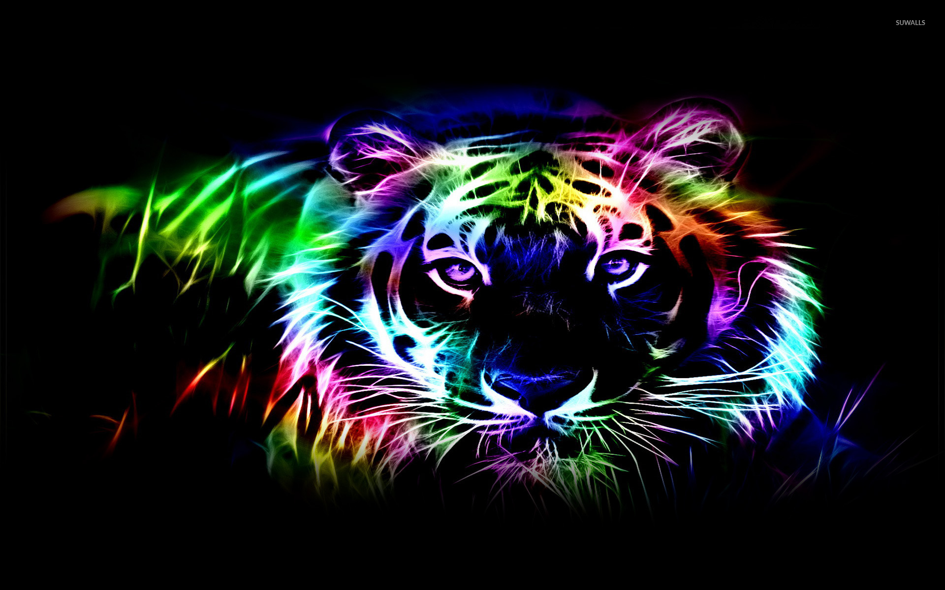 Neon tiger outline wallpaper digital art wallpapers 25440 neon tiger outline wallpaper digital art altavistaventures