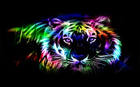 Neon tiger outline wallpaper 1920x1200 jpg