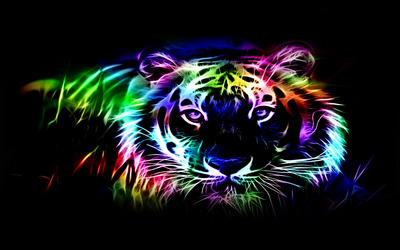 Neon tiger outline wallpaper