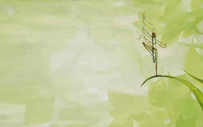 Ninja grasshopper wallpaper