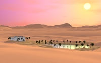 Oasis in the desert wallpaper 1920x1080 jpg