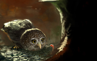 Owl and the worm wallpaper