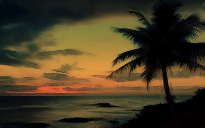 Palm tree at the ocean Wallpaper