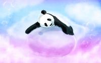 Panda [4] wallpaper 1920x1080 jpg
