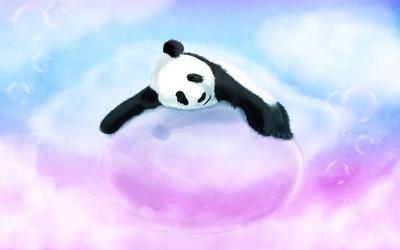 Panda [4] wallpaper
