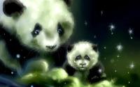 Pandas [3] wallpaper 1920x1200 jpg