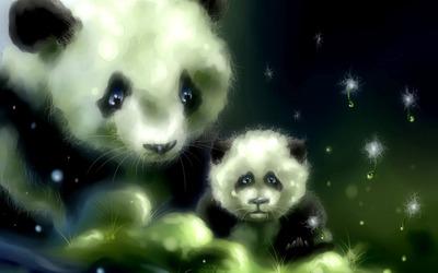 Pandas [3] wallpaper