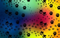 Paw print pattern wallpaper 1920x1200 jpg