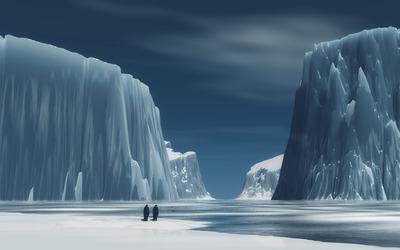 Penguins in Antarctica wallpaper