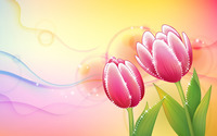 Pink tulips [4] wallpaper 1920x1200 jpg