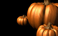 Pumpkins wallpaper 2560x1440 jpg