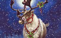 Reindeer with mistletoe wallpaper 1920x1080 jpg
