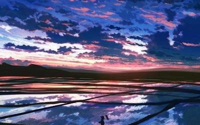 Rice plantation at sunset Wallpaper