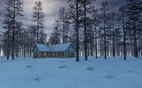 Snow on the house in the forest wallpaper 1920x1200 jpg