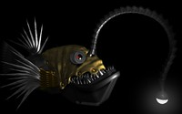 Steampunk anglerfish wallpaper 1920x1080 jpg