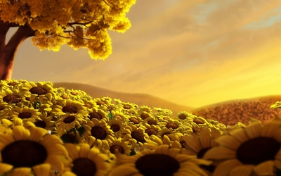 Sunflowers under an autumn tree wallpaper