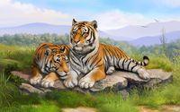 Tigers on a rock wallpaper 2560x1600 jpg