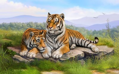 Tigers on a rock wallpaper
