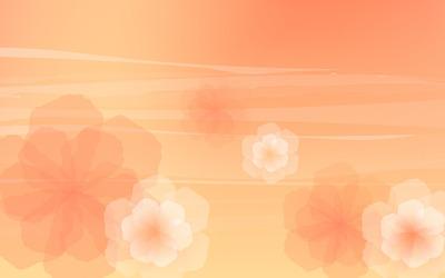 Translucent flowers wallpaper