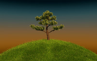 Tree on a green hill wallpaper 1920x1080 jpg