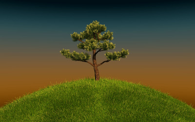 Tree on a green hill wallpaper