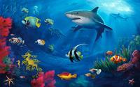 Underwater life wallpaper 1920x1200 jpg