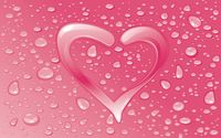 Water drops on the pink heart wallpaper 1920x1200 jpg