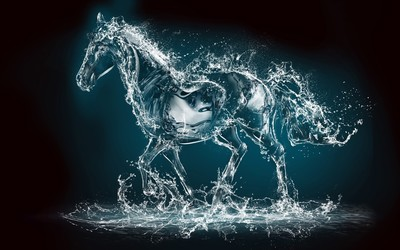 Water horse wallpaper