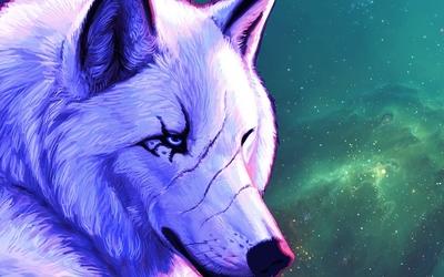White alpha wolf wallpaper