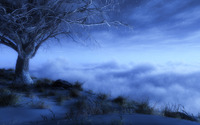 Winter night wallpaper 1920x1080 jpg