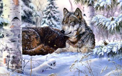 Wolf in snow wallpaper