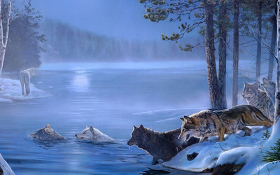 Wolves crossing the forest lake wallpaper