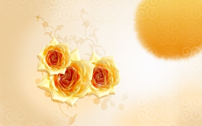Yellow roses in the sun wallpaper