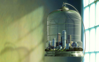 City in a birdcage wallpaper