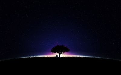 Couple under a tree on a glowing field wallpaper