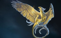 Dragon with feathers wallpaper 2560x1600 jpg