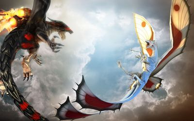 Dragons fighting wallpaper