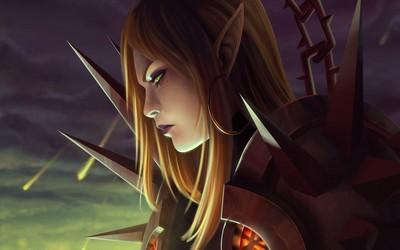 Elf warrior [2] wallpaper