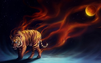Flaming tiger walking into the darkness wallpaper
