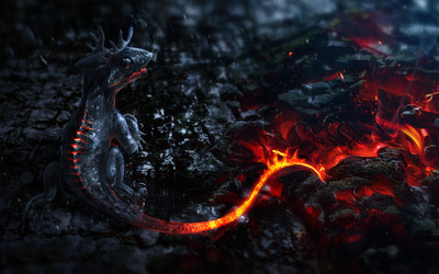 Lava dragon wallpaper