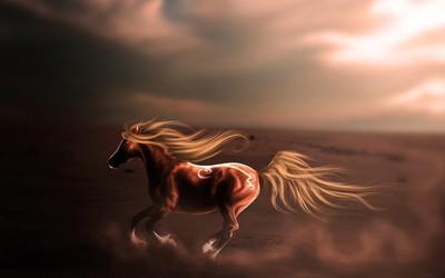 Majestic horse in the desert wallpaper