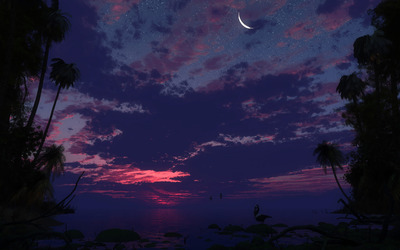 Moonlit scenery wallpaper