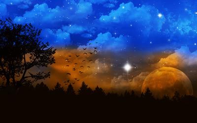 Night sky [3] Wallpaper