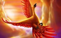 Phoenix [2] wallpaper 2560x1440 jpg